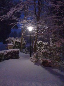 Narnia___The_Lamppost_by_Scedwards